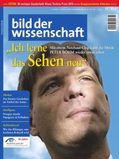 Cover_11_2015